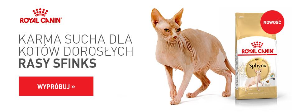 Karma sucha dla kotów dorosłych rasy SFINKS