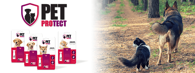 PetProtect_Newsletter_ZB-2
