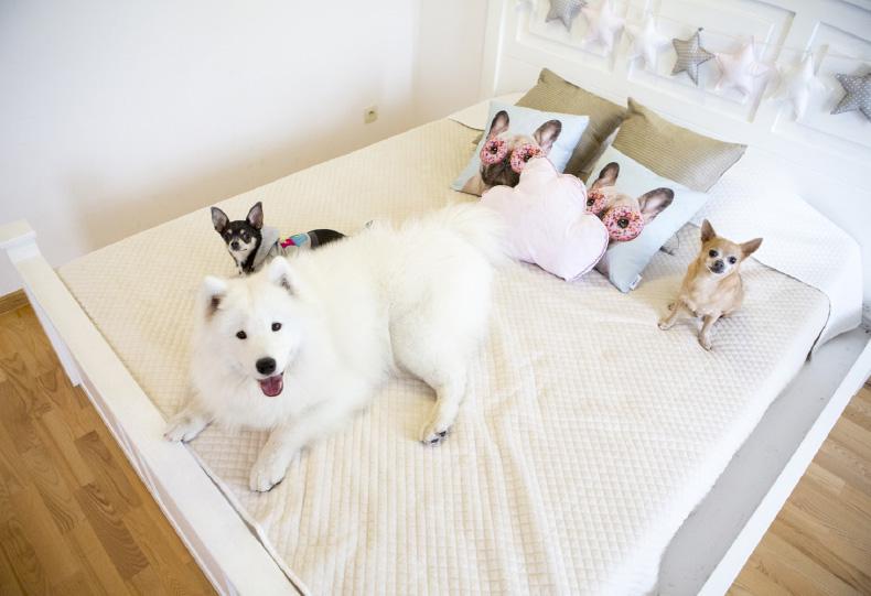 łóżkooo
