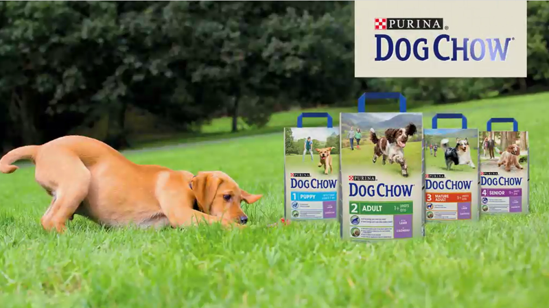 Dog CHow billboard sponsorski maly