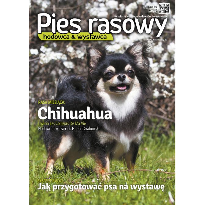 Już jest! Pies Rasowy – magazyn dla hodowców i wystawców psów rasowych.