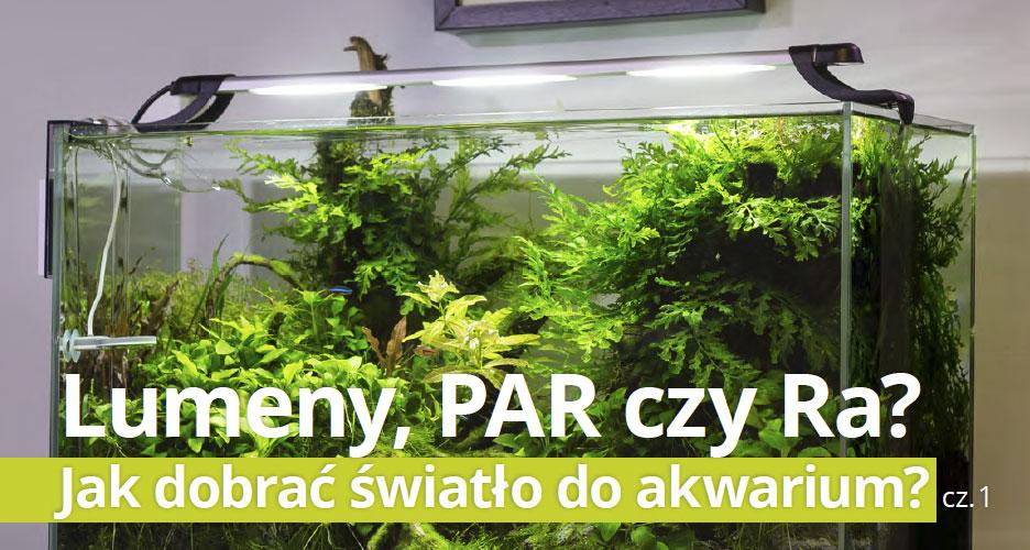 Lumeny, PAR czy Ra?  Jak dobrać światło do akwarium? cz.1
