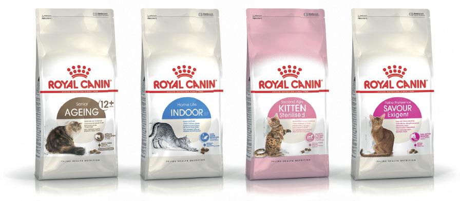 Wybierz Zdrowe Żywienie kotów wnowej odsłonie!