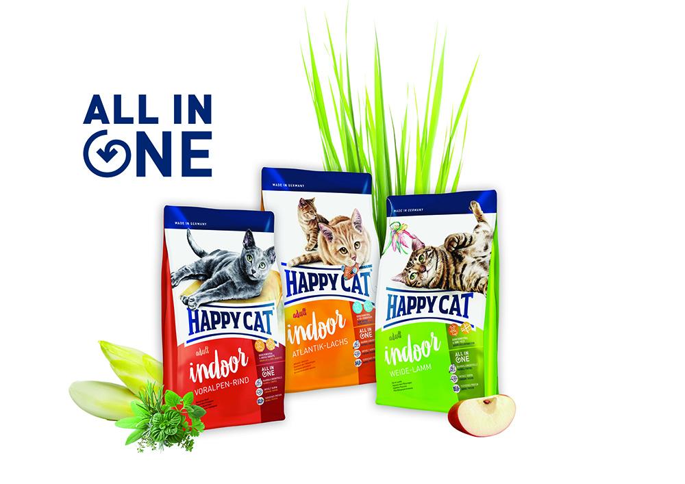 All In One nowa koncepcja żywienia kotów