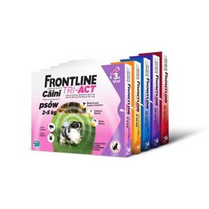 FRONTLINE-zbiorczy-2-1