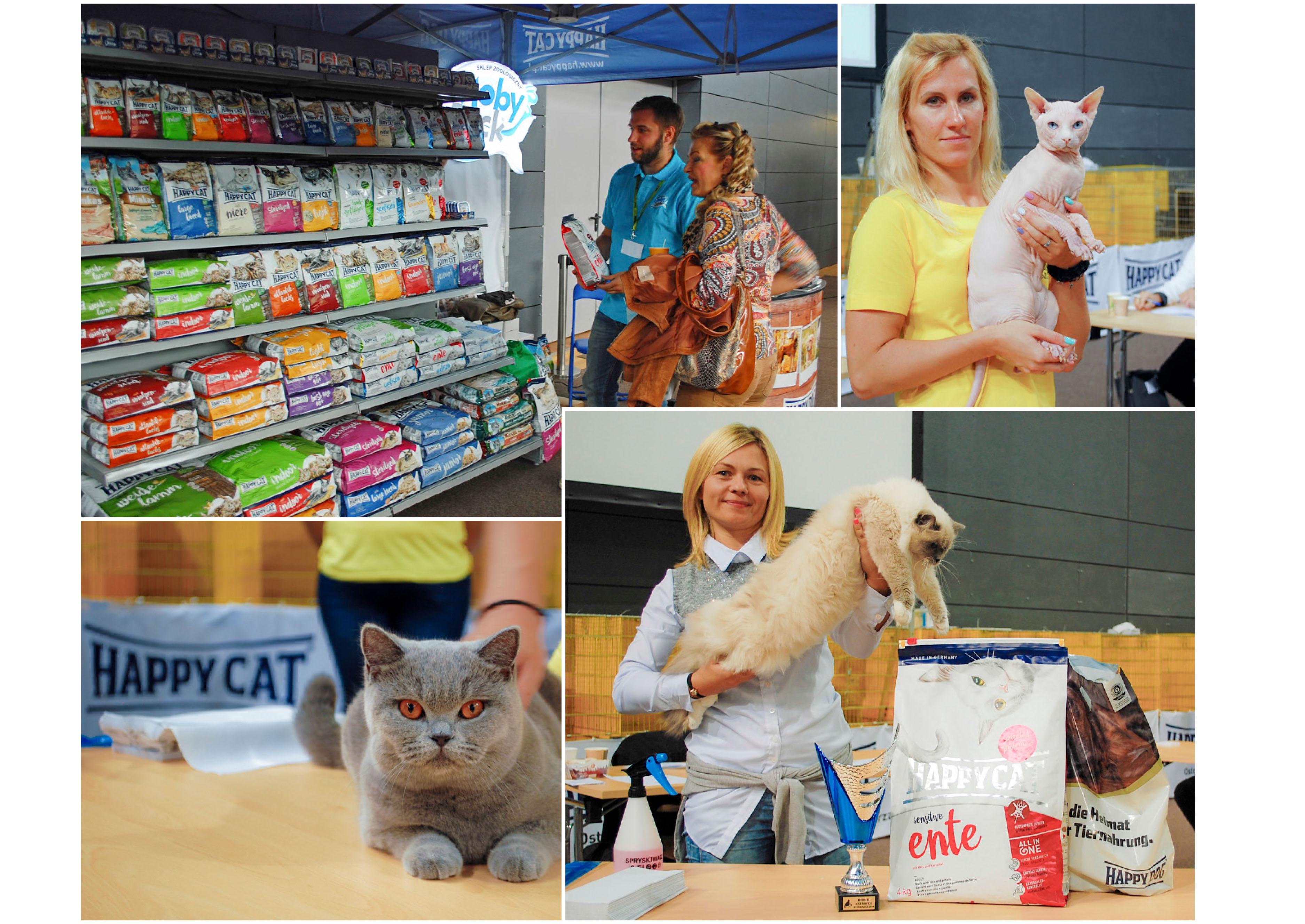 Międzynarodowa Wystawa Kotów wBydgoszczy