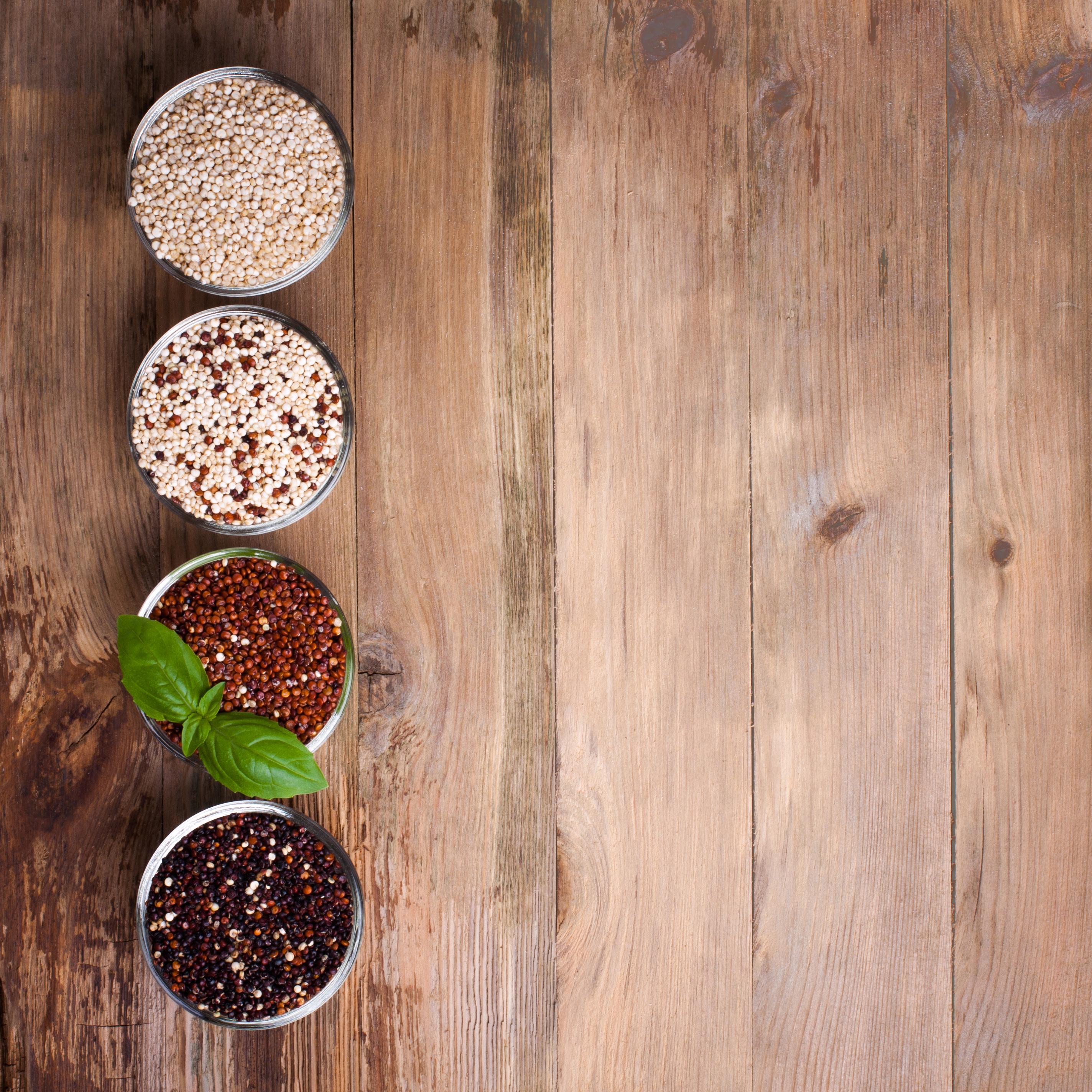 Karmy  gluten-free rzeczywista potrzeba czy kolejny trend?