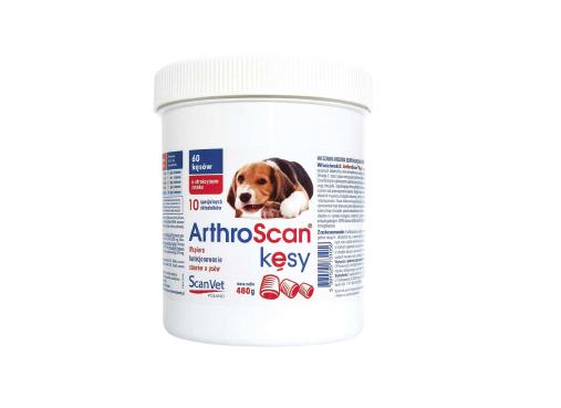ArthroScan® Kęsy – innowacyjny smakołyk dla psów