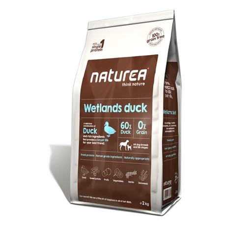 naturea-wetland-duck-100