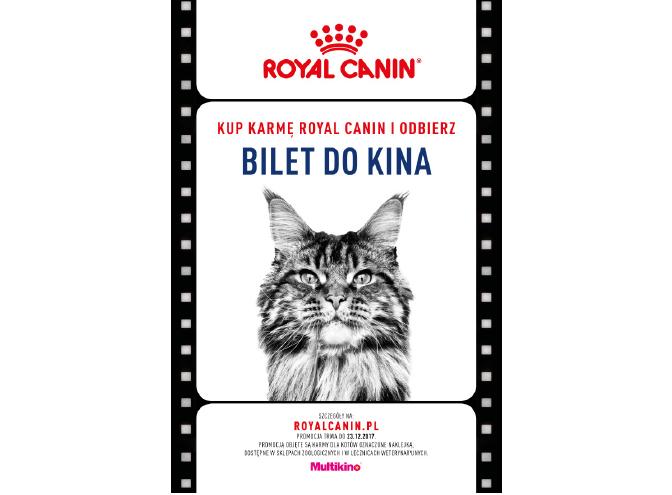 """""""Filmowe Lato"""" zMultikino i… Royal Canin!"""