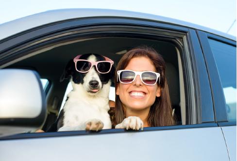 Podstawowe informacje dla osób podróżujących zpsem, kotem, fretką
