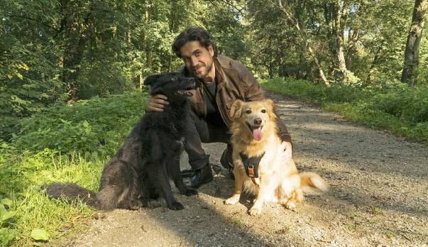 120 tys. osób zaangażowało się wochronę zdrowia zwierząt  – Marcin Dorociński oakcji FRONTMANI dla SCHRONISK