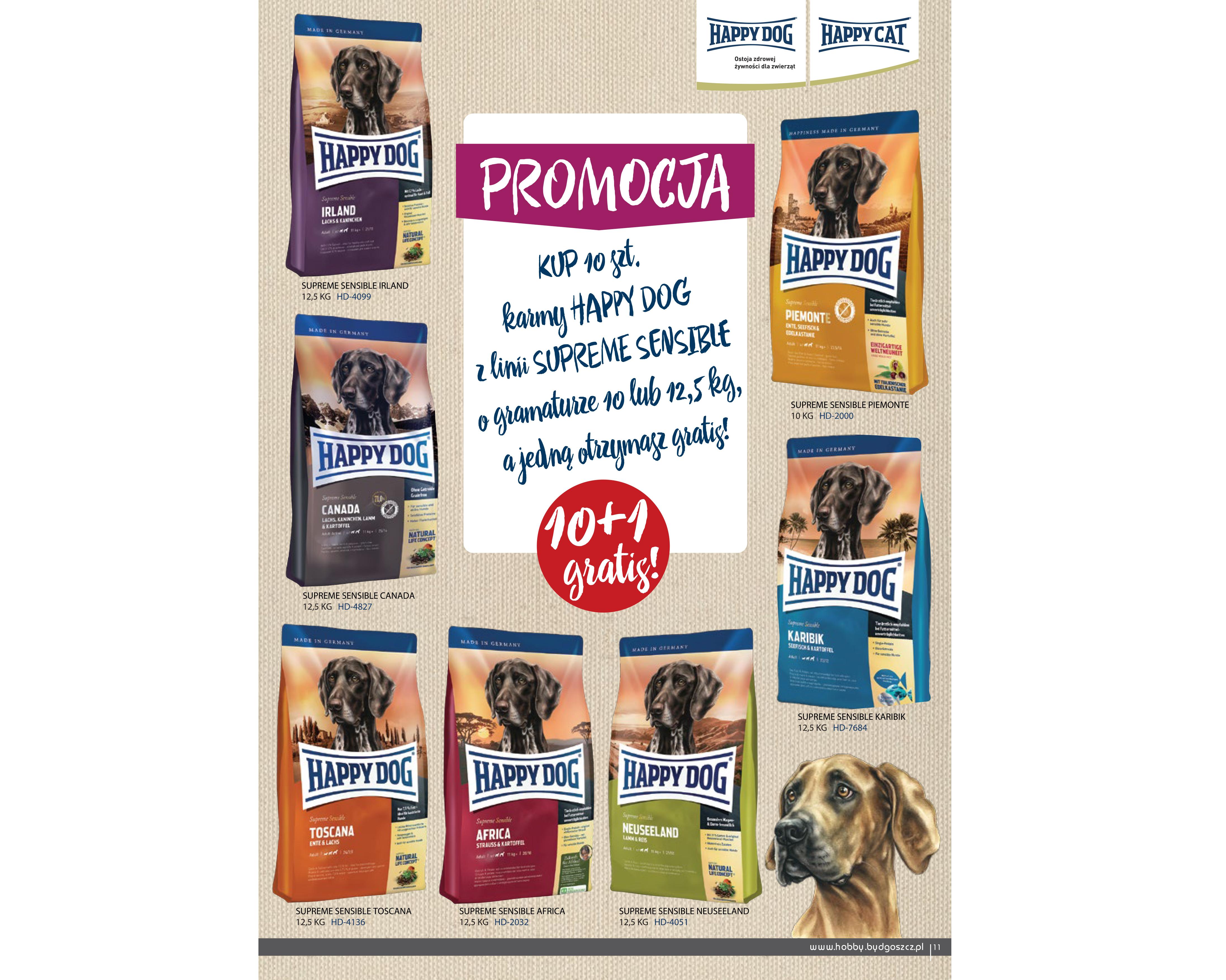 Promocja marki HAPPY DOG!