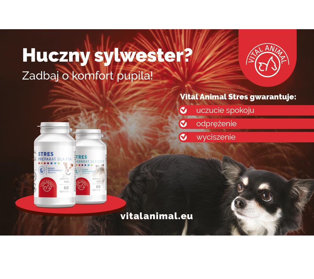 Vital Animal Stres dla psa i kota!
