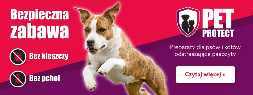 Preparaty dla psów i kotów odstraszające pasożyty!
