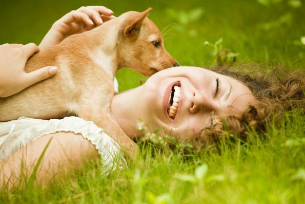 Kleszcze – Zagrożenie nie tylko dla psów