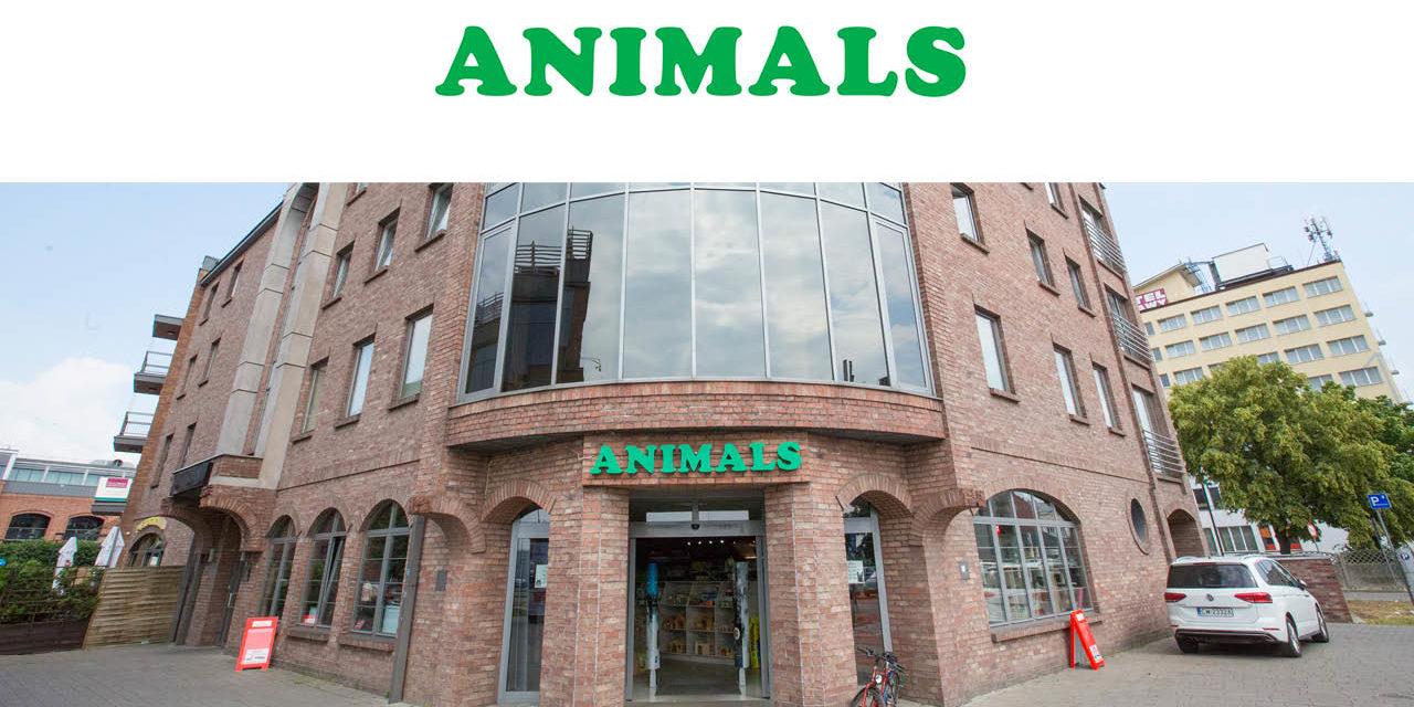Sklep zoologiczny ANIMALS we Włocławku
