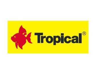 Firma Tropical szuka pracownika!