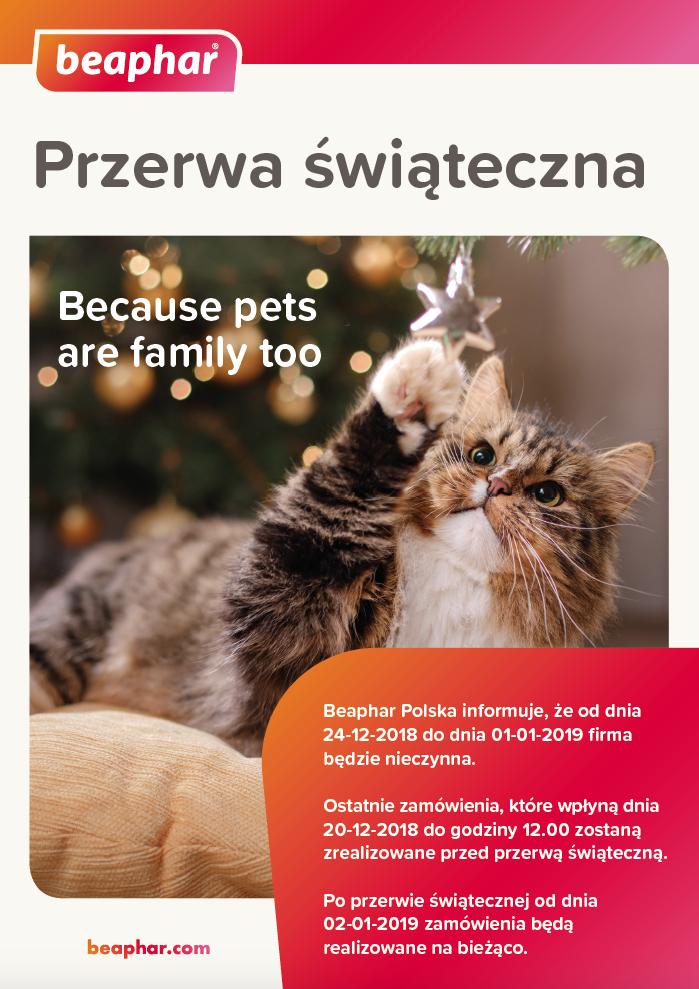 Przerwa świąteczna w firmie Beaphar Polska