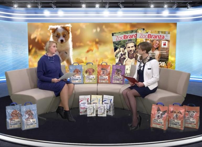 ZooBranża TV: Karmy gotowane czy gotowe- jak przekonać klienta?