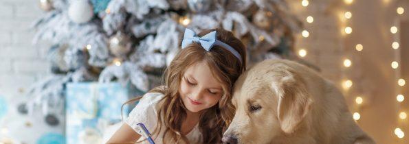 Idą święta czyli dziesięć pomysłów na prezent dla zwierzaka!