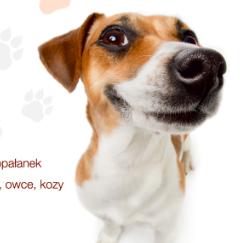 ZOO Park już 9 marca w Lublinie!