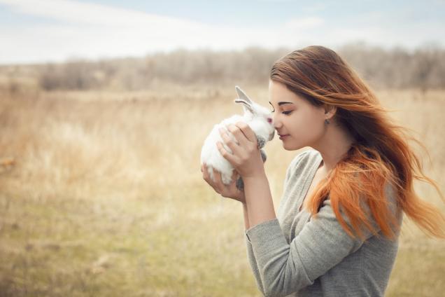 Nie tylko kolby – W krainie przysmaków dla gryzoni