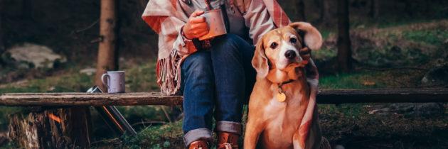 Z psem w podróży – Dziesięć produktów, o których nie możesz zapomnieć