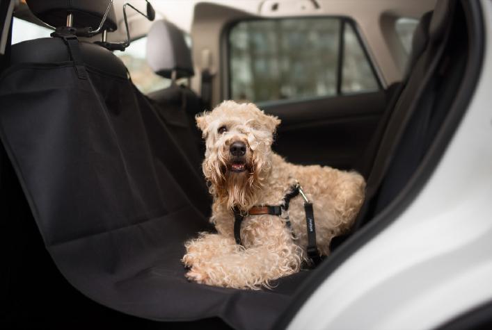 Mata samochodowa amiplay do przewozu zwierząt