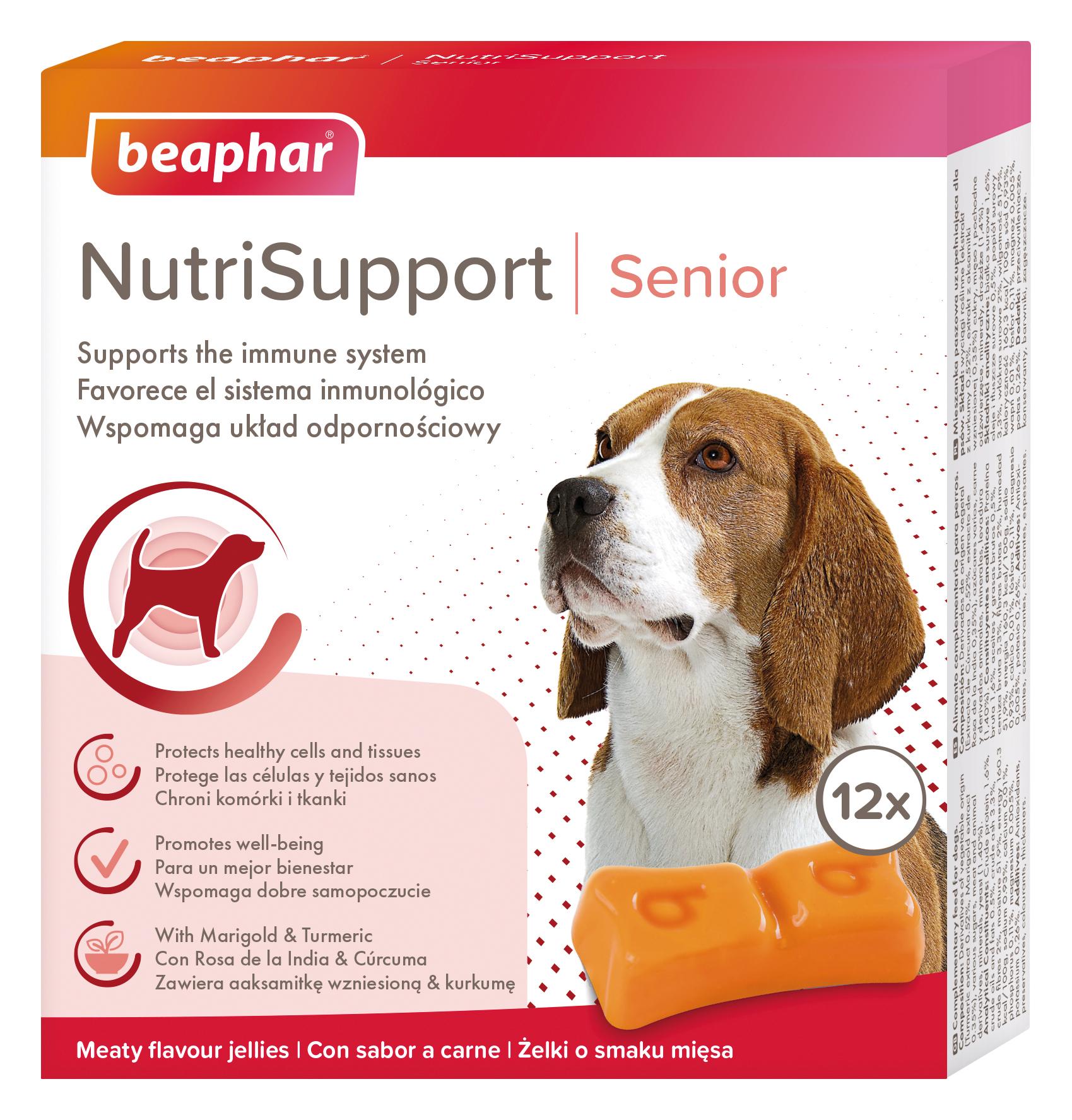NutriSupport – innowacyjne suplementy diety dla psów i kotów.