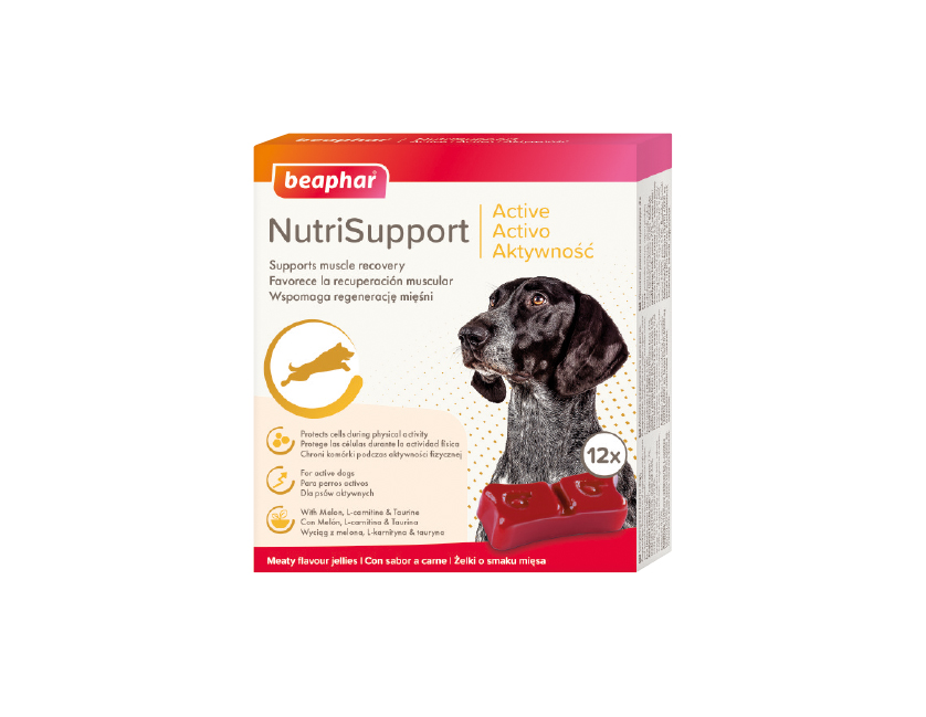 Beaphar NutriSupport Aktywność – dla aktywnych psów!