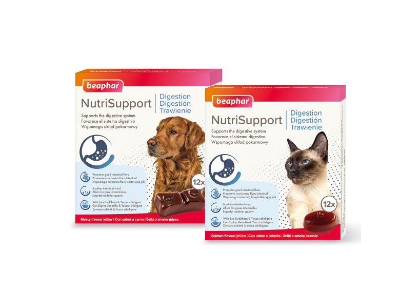 Beaphar NutriSupport Trawienie – wsparcie układu pokarmowego