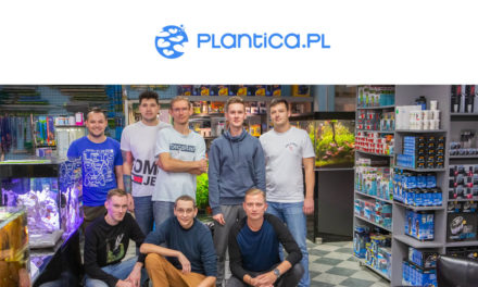 Sklep miesiąca – PLANTICA.PL