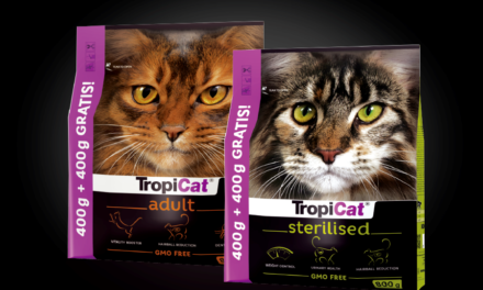 Promocja 400 g + 400 g gratis karma dla kotów dorosłych i sterylizowanych
