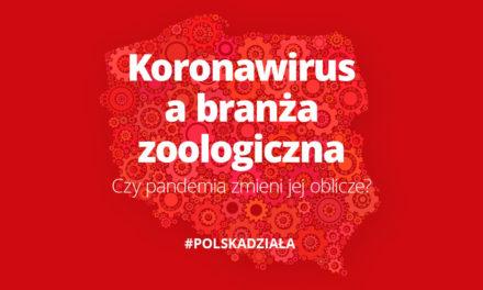 Koronawirus abranża zoologiczna Czy pandemia zmieni jej oblicze?