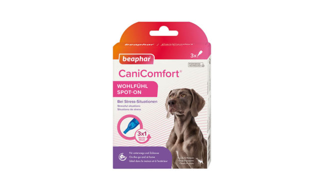 CaniComfort Spot-On – dawka spokoju dla każdego psa!