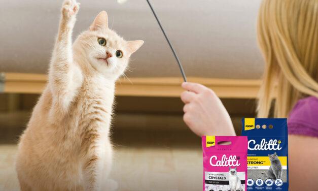 REGULAMIN: Kocie zabawy