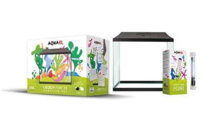 Leddy Mini Creative Set – chodź, pomaluj swój świat!