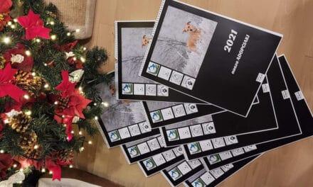 Kup kalendarz zadopciakami ipomóż zwierzakom!