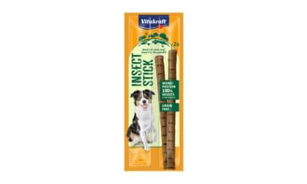 Nowe produkty Vitakraft®! Insect Stick 2 sztuki