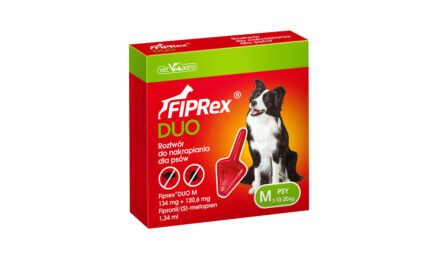 Fiprex® Duo – bezpieczny pupil, bezpieczne legowisko!