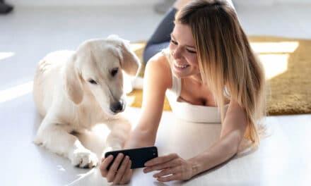 Potencjał mediów społecznościowych wbranży zoologicznej