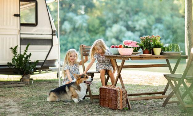 """Jemy poza domem, Czyli jak karmić """"psa na urlopie""""?"""