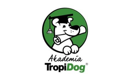 Pierwszy taki projekt wPolsce – Akademia TropiDog!
